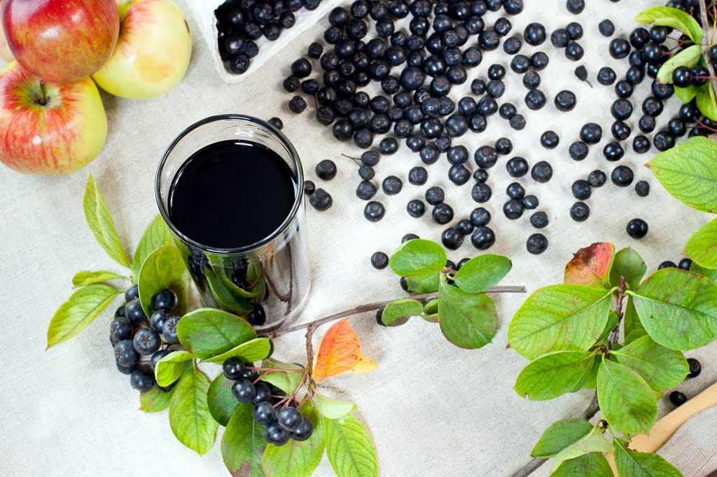 Горілка з чорноплідної горобини. Настоянка з горобини чорноплідної: простий рецепт в домашніх умовах