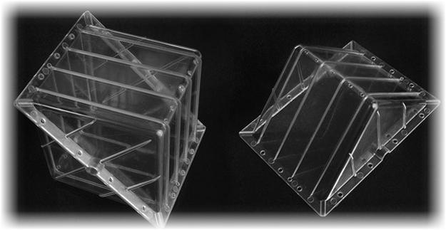 Кубічні квадратні кавуни-їстівна екзотика. Квадратні кавуни з японії як японці вирощують квадратні кавуни